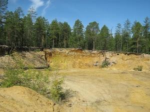Соцсети: песчаный карьер вместо леса может появиться на станции «Дубравная» в Сормове