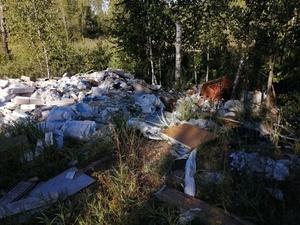 Пять тысяч кубометров опасного мусора обнаружено в районе Орловских двориков