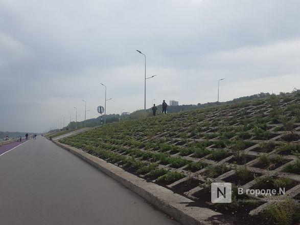 Велодорожка и сады на бетонном склоне: новая жизнь набережной Гребного канала - фото 27