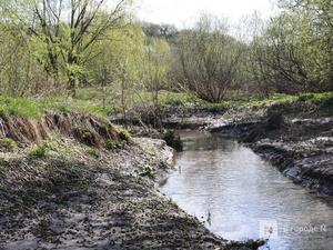 Стало известно, какие нижегородские малые реки  очистят в первую очередь