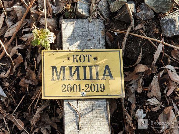 Православный крест над котом: где находится нижегородское кладбище домашних животных - фото 6