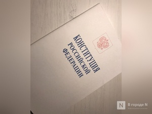 Треть нижегородцев уже проголосовала по поправкам в Конституцию, сообщил Избирком