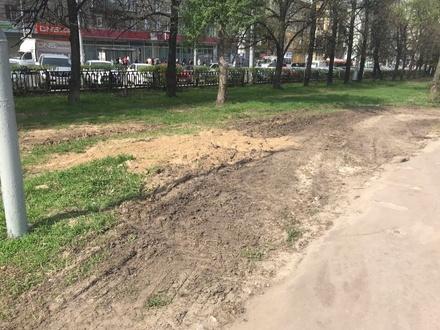 Администрация Нижнего Новгорода найдет ответственных за испорченный газон на площади Горького