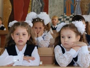 Экология может стать обязательным предметом в нижегородских школах