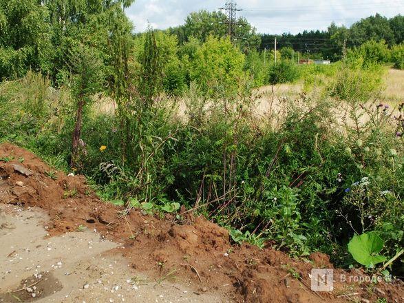 Долгая дорога из Долгово: птицефабрика «выставила» местных жителей на трассу - фото 21