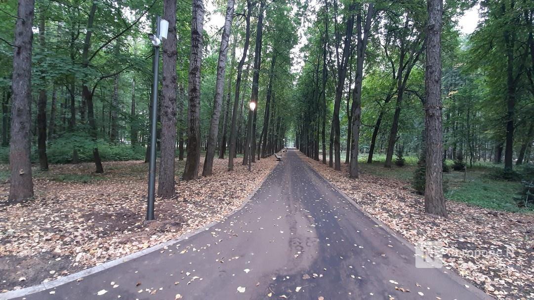 Джазовый фестиваль «Осень в «Швейцарии» пройдет в обновленном нижегородском парке - фото 1