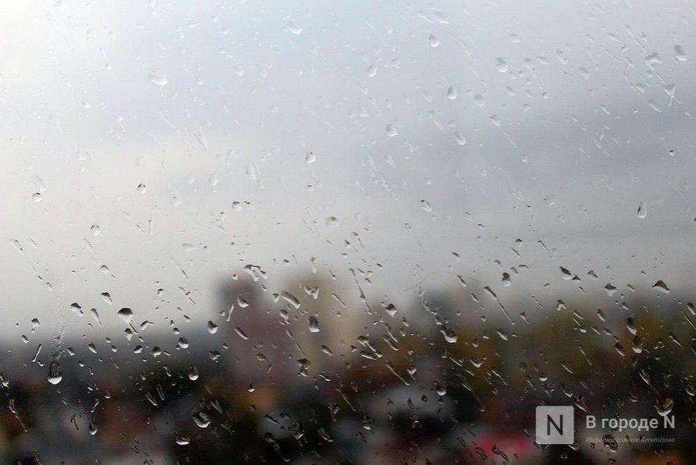 Похолодание до +12°С и дожди придут в Нижний Новгород на этой неделе