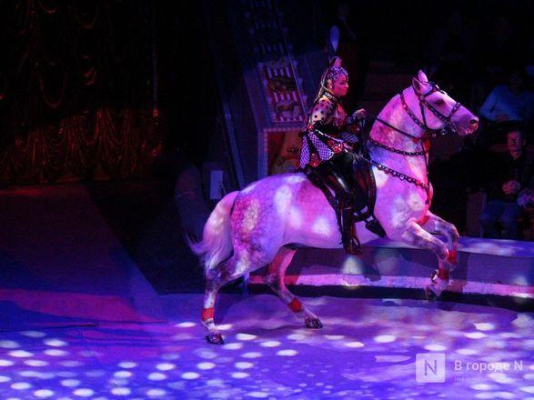 Чудеса «Трансформации» и медвежья кадриль: премьера циркового шоу Гии Эрадзе «БУРЛЕСК» состоялась в Нижнем Новгороде - фото 78