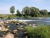 Ичалковский бор официально закрыт для посещения туристами