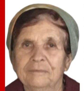 В Выксунском районе пропала 83-летняя пенсионерка - фото 1