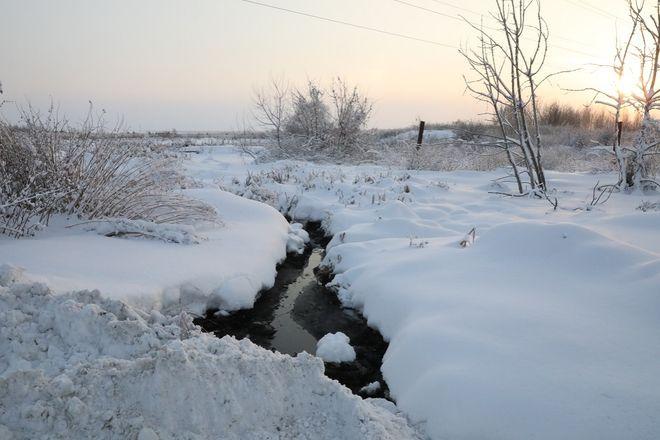 Свалку в Гагинском районе ликвидируют по решению суда - фото 1