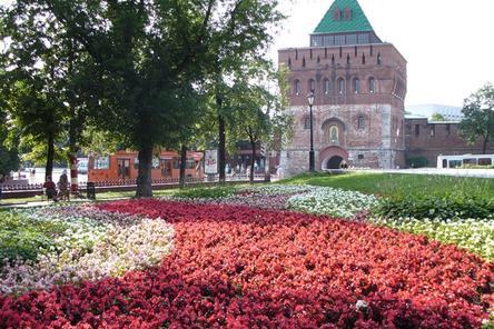 120 нижегородцев подали заявки на конкурс по формированию Общественной палаты