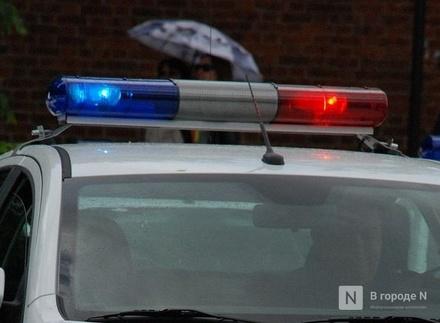 Пьяный водитель напал на полицейского в Большеболдинском районе