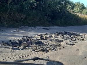 Кстовская администрация ищет собственника дороги, «залатанной» сапогами