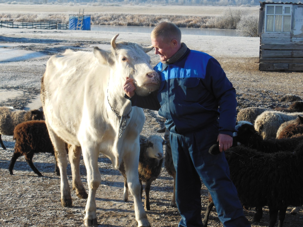 55,5 млн рублей направят на поддержку нижегородского фермерства  - фото 1