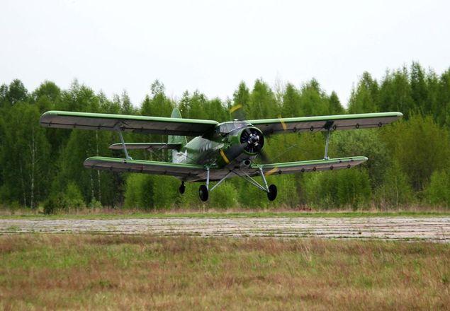 Нижегородские леса начали патрулировать с воздуха - фото 1