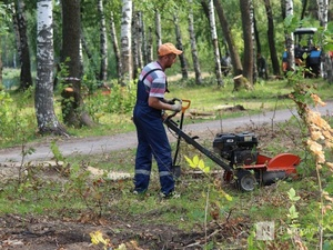 Свыше 13 тысяч нижегородцев уже проголосовали за благоустройство общественных пространств