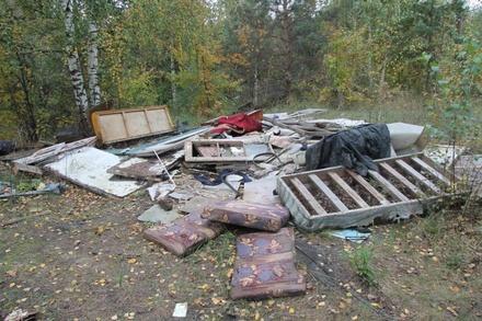 Суд обязал администрацию Дзержинска убрать незаконные свалки
