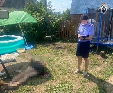 Уголовное дело возбуждено по факту убийства садовода в Дзержинске - фото 1