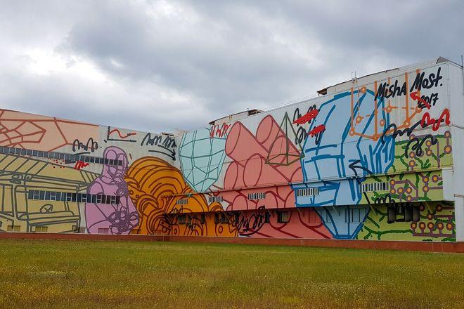 Первый в России индустриальный стрит-арт парк открылся в Выксе  - фото 2