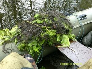 Около двух километров сетей вытащили егеря и Рыбнадзор из водоемов Навашинского заказника